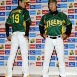 『【野球】阪神が「ウル虎の夏2014限定ユニホーム」発表』の画像