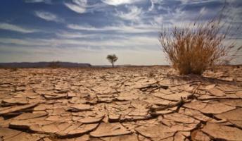 「35年後の地球の姿」経済どころではない、世界中のみんな餓死! 英大手ロイズ銀行の過激レポート