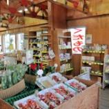 『6/29開催!「とうもろこし・えだまめ祭り」(食の広場ピアッツァ)』の画像