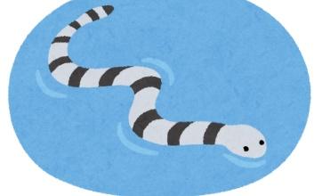 ハブの80倍の猛毒蛇が近づいてきた時の対処法wwww
