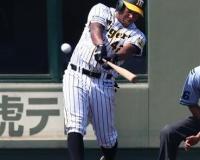 【朗報】阪神・ソラーテ、昇格スタンバイOK!2軍練習試合で2打点デビュー