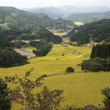 『いつか行きたい日本の名所 蕨野の棚田』の画像