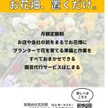 『支援事例<花百景さん>プランター鉢植えの定額制モデル「お花畑、おくだけ」』の画像