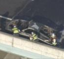 高速道路でフェラーリ炎上「走行中に火が出た」