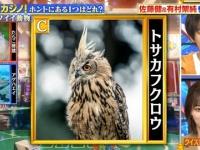 【乃木坂46】山下美月出演『クイズ!THE違和感』実況まとめ!!! ※画像大量