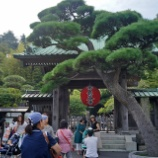 『長谷寺 (鎌倉市)』の画像