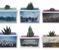【欅坂46】ローソングッズはサボテンしか買わないつもり。他は買っても無駄になるから…
