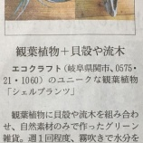 『【日経MJで紹介されました】自然素材メーカーのエコクラフトさん』の画像