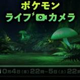『【ポケモン剣盾】ガラル地方の不思議な森を観察!「ポケモンライブカメラ」が22時から24時間連続配信 何か新ポケモンが出てくるかも?』の画像