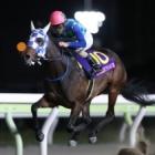 『【大井・東京プリンセス賞結果】ケラススヴィアが7馬身差圧勝で2冠達成!』の画像