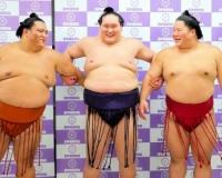 【悲報】照ノ富士の師匠「漏らせねぇのか、根性無し!!!!!!」