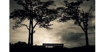 【武勇伝】夕方の公園の灌木の茂みでゴソゴソ音が→近づこうとする息子を止めた時、突然息子が…