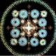 知られざるミクロの芸術!顕微鏡で見た「藻」がまさかの様式美で話題に