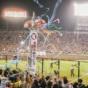 無観客試合でプロ野球が開幕したら阪神優勝するよな