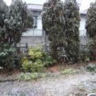 『【ピノ子日記】取りあえずの雪対策』の画像