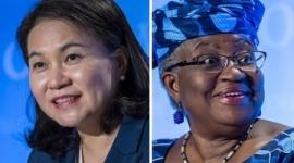 【火病】WTO事務局長選挙、劣勢の韓国「日本がネガキャン」と逆ギレwwwww