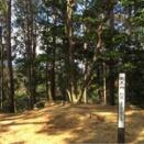 京都西山 天王山