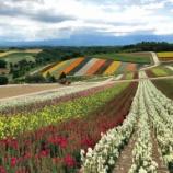 『【北海道ひとり旅】上川の旅『四季彩の丘』開園時間に訪問した美しい風景』の画像