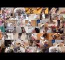 チャオちゅ~るの動画に英語版があるのを見つけてフイタ。更に中国語版もあってさらにフイタ