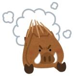 『彡(^)(^)「山で鬼滅のコスプレしたら映えそうやな…せや!」』の画像
