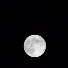 月がきれいだったので