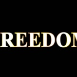 『7/26 FREEDOM 特日』の画像