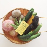 『能勢のお野菜』の画像