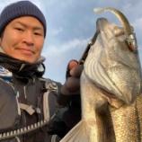 『2019年初釣り。海の中はまだ暖かかった。』の画像