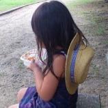 『娘と二人明石公園へ』の画像