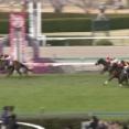 【競馬】グランアレグリアはスプリンターズSを回避 ルメールはタワーオブロンドンに騎乗へ