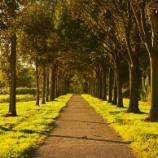 『田舎を都会にする方法wwwwww』の画像