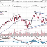 『【パニック】中国発新型肺炎で世界の株式市場は20%暴落する!』の画像