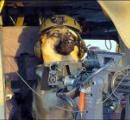 犬が飼い主に発砲 飼い主は腕に銃弾を受け重傷