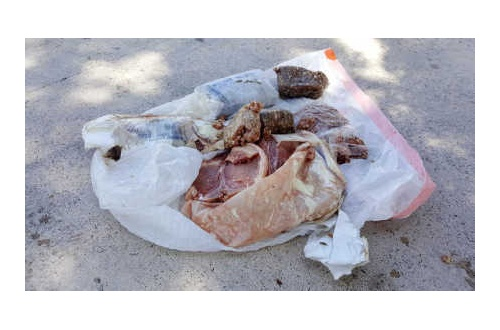 【米国】冷凍豚肉が民家の屋根を空から直撃wwwのサムネイル画像