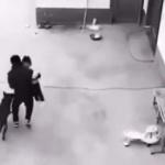【動画】中国、人身売買業者が民家に侵入、子供を誘拐する瞬間!防犯カメラ映像 [海外]