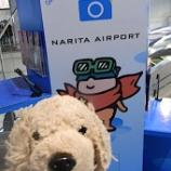 『【成田空港 不健康な~~一日の6】』の画像
