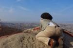 カメラはその姿を捉えた!交野山山頂で日本一のあるモノが観れるぞ!