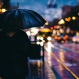 『梅雨ですね』の画像