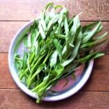 『いくらでも食べれて草』の画像