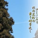 『花粉の時季』の画像