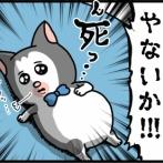 食い意地がすさまじすぎてもう誰にも止められない猫