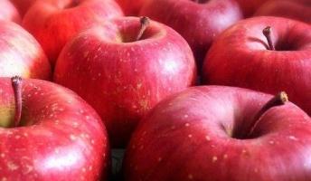 毎日1個のリンゴを食べると長生き 肺がんや心臓病、アレルギーも減らす