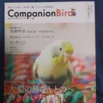 いんこいんこぴよさんず。~鳥さん情報ブログ~