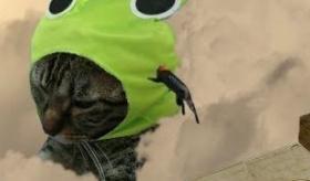 【日本の創作】     進撃の巨人OP 猫パロディ動画が 中毒になる。    海外の反応