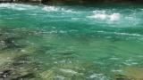 【朗報】川、めっちゃきれい(※画像あり)