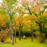 『短い秋Short autumn.』の画像