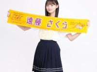 【乃木坂46】3期4期ライブの推しタオル、めっちゃ良いな...(画像あり)