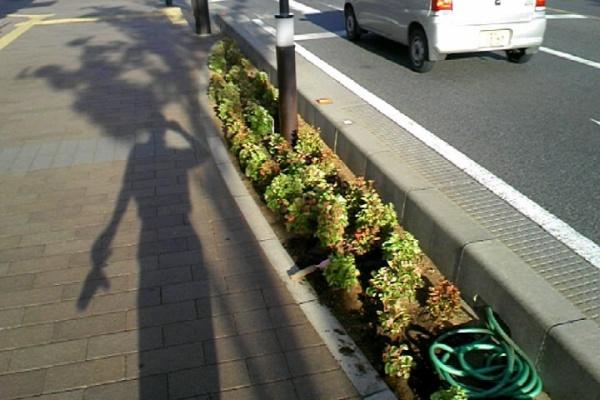 戸田 市 天気