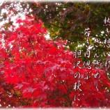 『フォト短歌「紅に萌」』の画像