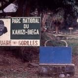 『行った気になる世界遺産 カフジ=ビエガ国立公園』の画像